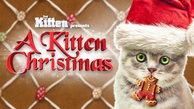 Kitten TV - Christmas Edition