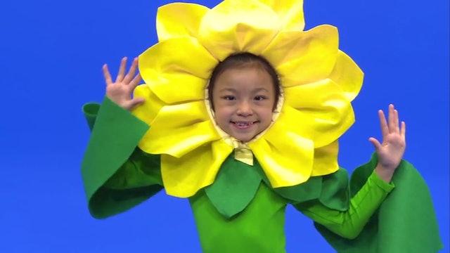 SF_RTS2_flower_fun