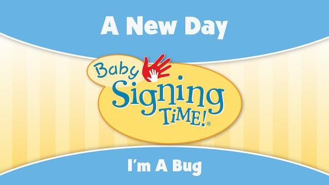 BST 3 - I'm a Bug