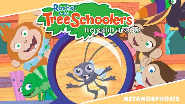 Rachel & the TreeSchoolers Metamorphosis