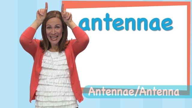 SF_RTS3_Antenna