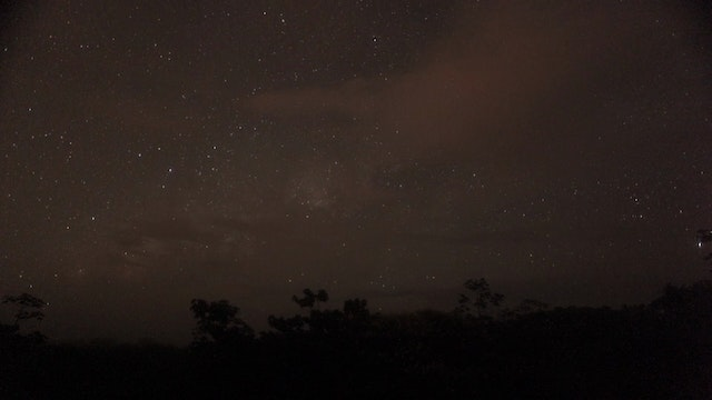 7. (TL) Night TIme sky with stars moving and trees