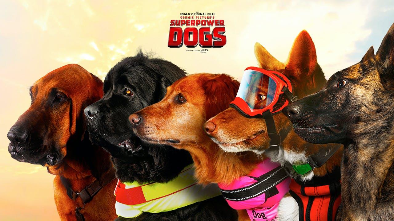 Superpower Dogs (English version)