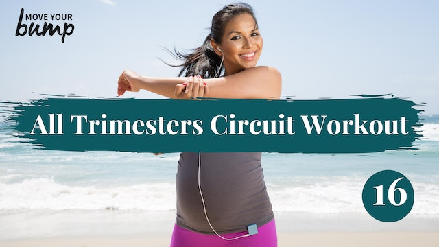 All Trimester - Circuit Workout 16