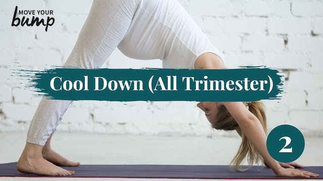Cool Down Routine 2 (All Trimester)