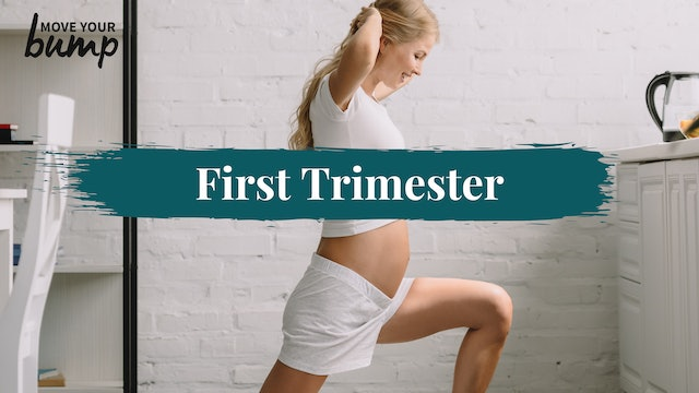 First Trimester (1TM)