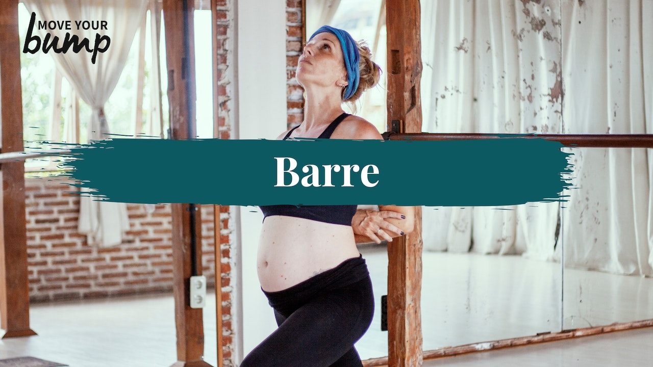Pregnancy Barre - All Trimesters