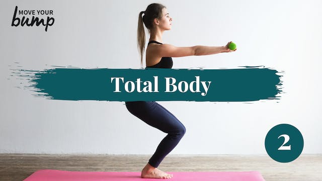 Total Body Circuit Workout #2
