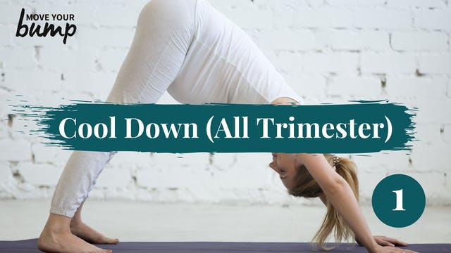 Cool Down Routine 1 (All Trimesters)