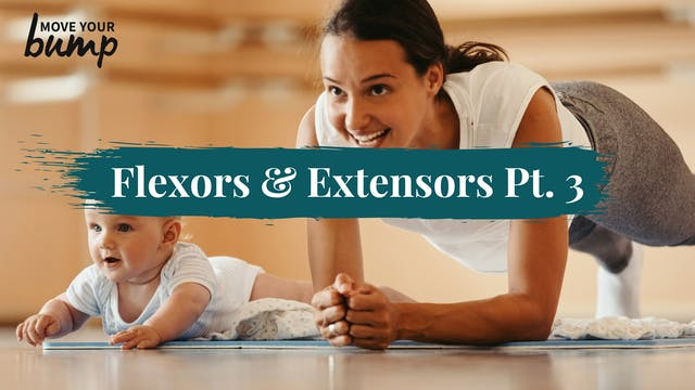 Activation #8 - Flexors & Extensors (...