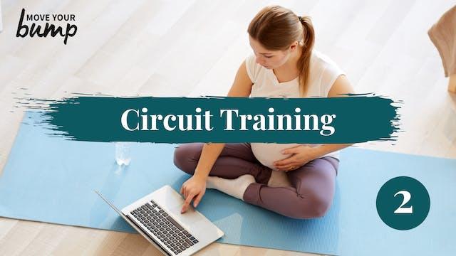 3TM Total Body Circuit Workout 2