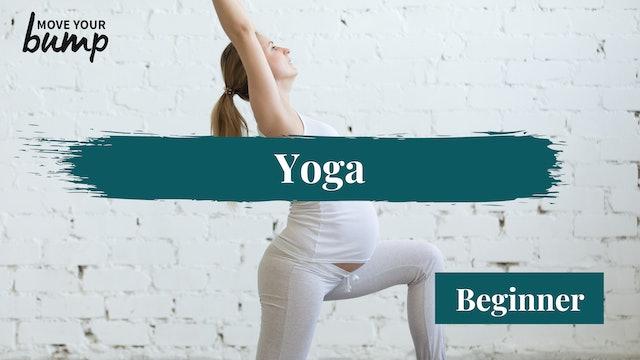 Yoga Flow Basics