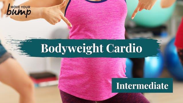 Bodyweight Pregnancy Cardio (intermed...