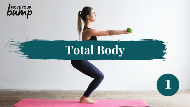 Total Body Circuit Workout 1