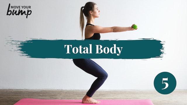Total Body Circuit Workout 5