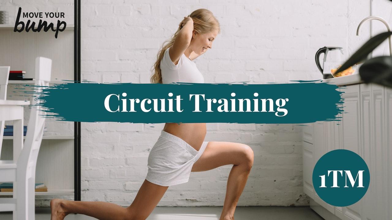 1TM Circuit Training