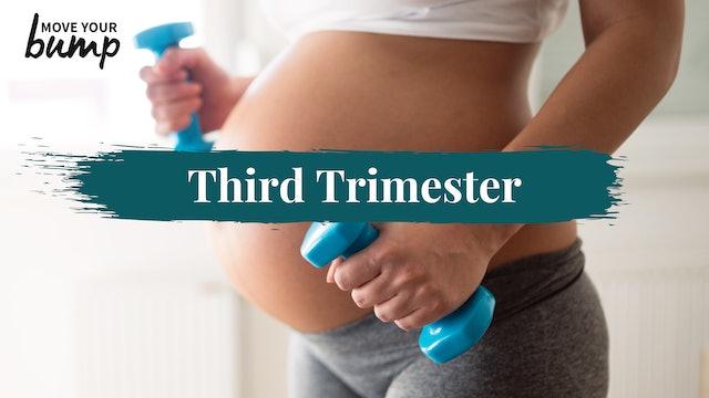 Third Trimester (3TM)