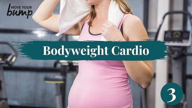 Bodyweight Pregnancy Cardio + Upper Body #3