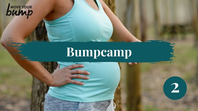 Bump Camp Workout 2
