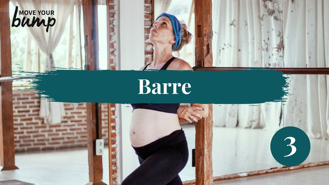 All Trimester Pregnancy Barre Workout 130BPM