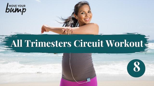 All Trimester Bodyweight Core & Cardio Circuit 8