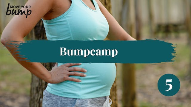 Bump Camp Workout 5