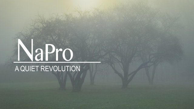 NAPRO: A Quiet Revolution