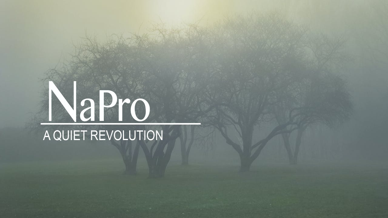 NAPRO: A Quiet Revolution (Deluxe package)