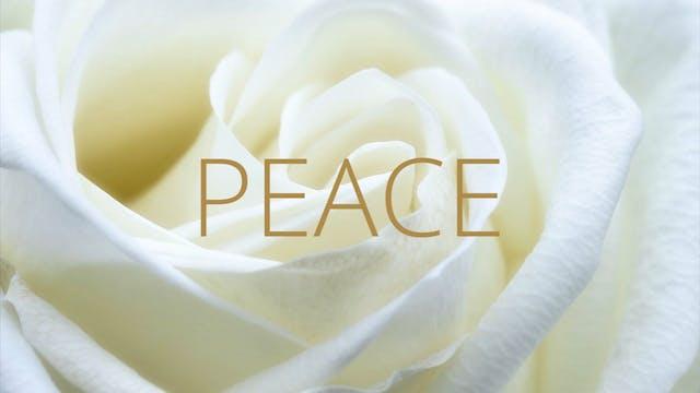 PEACE | Forgiveness