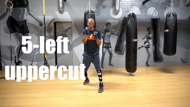 Full Shadow Boxing Tutorial