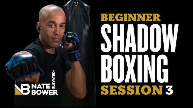 Beginner Shadow Boxing Session 3