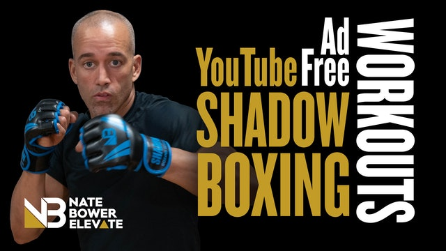 Ad Free Shadow Boxing Workouts