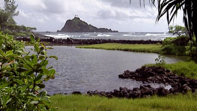 Ahupua`a Fishponds and Lo`i
