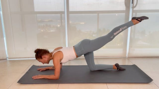 MAT - PILATES WORKOUT NO PROPS NEEDED