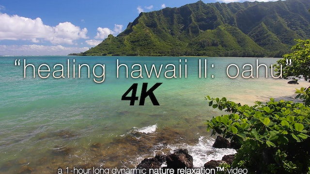 Healing Hawaii II Oahu (Nature Sounds) 1 HR Dynamic Relaxation Video