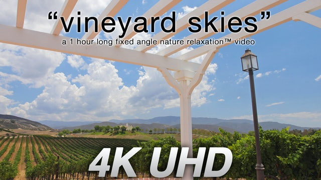 Vineyard Skies 1 HR Static Nature Scene