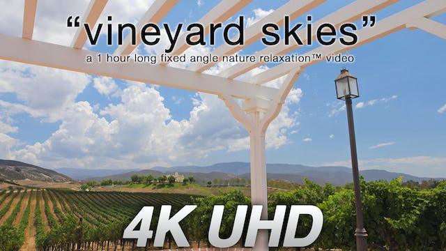 Vineyard Skies 1 HR Static Nature Scene