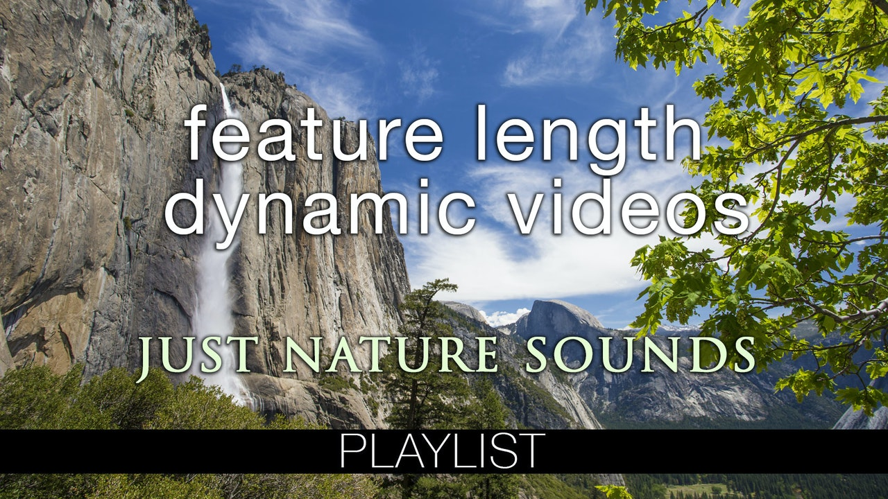 Feature Length Dynamic Films (Nature Sounds Only)