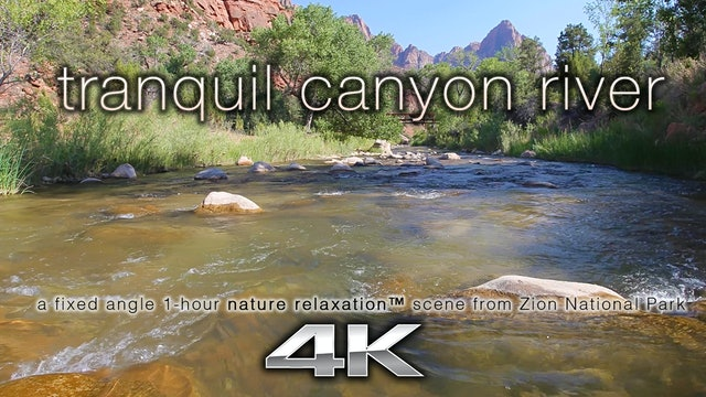 Tranquil Canyon River 4K 1 Hour Static Video
