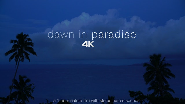 Dawn in Paradise 1HR Dynamic Film + Stereo Nature Sounds - Fiji & Antigua