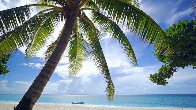 Glistening Island Beach Nature Relaxa...