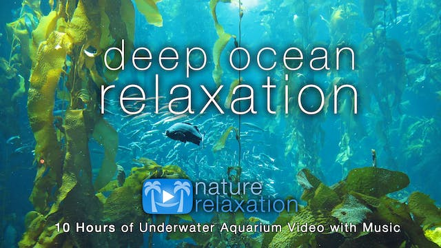 Deep Ocean Relaxation 8HR + Music Dyn...