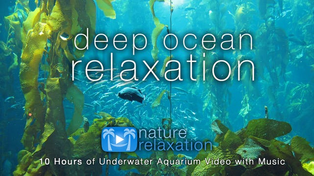 Deep Ocean Relaxation 8HR + Music Dynamic Film