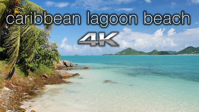 Caribbean Lagoon Beach 1 HR Static Nature Scene 4K