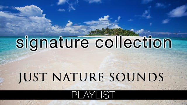 SIGNATURE Dynamic Films (No Music)