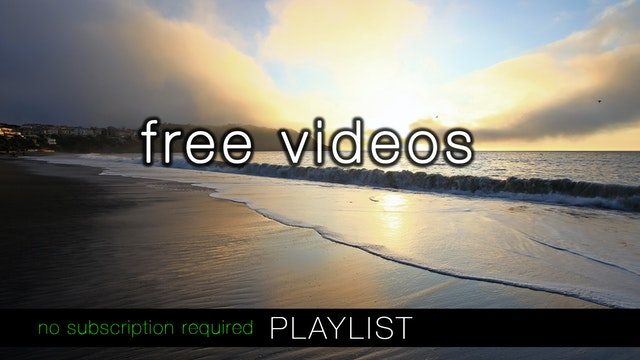 Free Demo Videos (No Subscription Required)