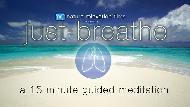 Just Breathe | 15 Min Guided Meditation with Music