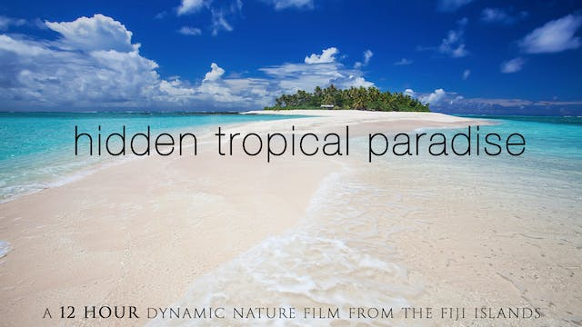 Hidden Tropical Paradise 12 HOUR Dyna...