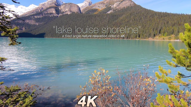 Lake Louise Shoreline Nature Relaxation Video 1 HR 1080p