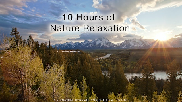 10 Hours of Nature Relaxation with Music